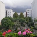 Umzüge Hellersdorf